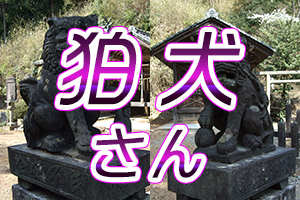 高座神社の狛犬さんのイメージ