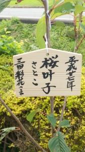 桜叶子(さとこ)